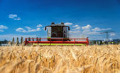 Harvesting machine — Stock Photo