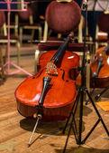 Orchestra — Stock Photo