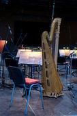 Harp in hall — Stock Photo