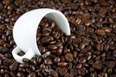 China bowl with coffee beans — Stock Photo