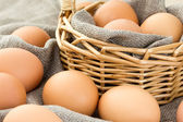 Close-up of brown eggs — Stock Photo