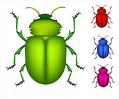 Set of colored beetles — Stock Vector
