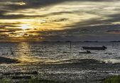 Eastern Shore — Fotografia Stock