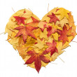 Stock Photo: Heart of Autumn