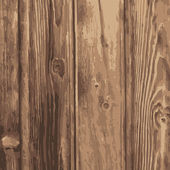 Vector realistic wood texture. — Stock Photo