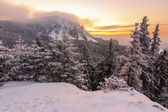 Winter sunrise landscape — Stock Photo