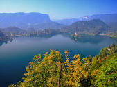 Lake Bled,Slovenia,Europe — Stock Photo