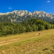 Beautiful mountain ridges and wonderful panorama,Piatra Craiului mountains,Carpathians,Romania — Stock Photo