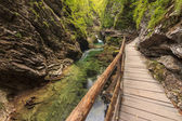 Vintgar gorge and wooden path,Bled,Slovenia — Stok fotoğraf