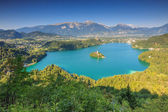Panoramic view of Bled Lake in Julian Alps,Slovenia,Europe — Stock Photo