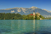 St Martin church on island,castle and mountains in background,Bled lake,Slovenia — Stock Photo
