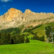 Green fields,woods and high mountains,Dolomites,South Tyrol,Italy — Stock Photo