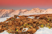 Fantastic colorful sunset and winter landscape in the mountains — Stock Photo