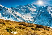 Spring landscape on a sunny day in the Fagaras mountains,Carpathians,Romania — Stock Photo