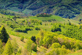 Spring landscape panorama,hills and meadow,Holbav,Transylvania,Romania — Stock Photo