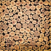 Pile of chopped fire wood — Foto de Stock