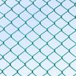 Royalty-Free Stock Photo: Green wire mesh