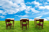 Class room student on green grass — Stock Photo