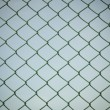 Stock Photo: Wire mesh