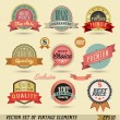 Vintage labels set. Vector design elements. — Stock Vector