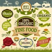 Set of Fresh Organic natural food Labels — Stock Vector