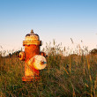 Rusty Fire Hydrant in Field — Stock Photo