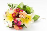 различные цветок — Стоковое фото