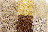 Set of cereals: rice, millet, buckwheat, oatmeal — Stock Photo