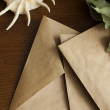 Old paper envelopes and bay leaf on a wooden background — Stock Photo