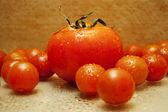 Big red tomato among small tomatoes — Stock Photo