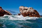Ballestas Islands, Peru — Stock Photo