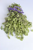 Bunch of fresh thyme on a white background — Stock Photo