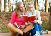 Beautiful women reading — Stock Photo