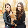 Stock Photo: Beautiful sisters with pet dog