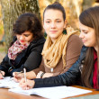 Confident students — Stock Photo