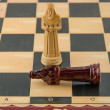 Wooden chess — Stock Photo #20152481