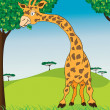 African giraffe in jungle — Stock Vector