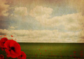 WW1 First World War Abstract Background with Poppies — Stock Photo