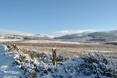 Scena di neve in irlanda — Foto Stock