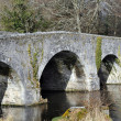 Large granite bridge — Stock Photo