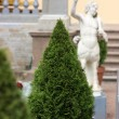 Stock Photo: Ornamental tree cone amid statues and banisters