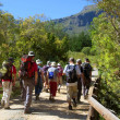 Group of hikers crosses the bridge — Stock Photo