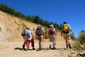 Skupina pěti turisté chodí v řadě — Stock fotografie