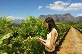 Slim mulatto girl inspects grape vine — Stock Photo