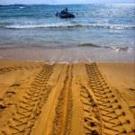 Tractor's wheel mark on beach — Stock Photo #21642891