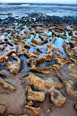 Rocky beach in dusk — Stock Photo