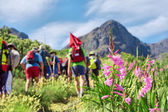 Grup hiking karşı pembe çiçekler — Stok fotoğraf
