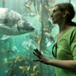 Young woman looks at big fish — Stock Photo