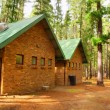 Постер, плакат: Ecological forest houses after rain