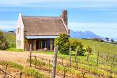 Little winemaker's house — Stock Photo